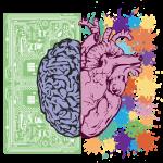 brain-3017071_1920