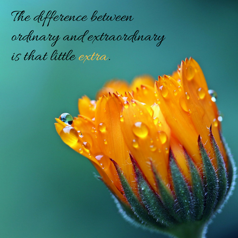 the-difference-between-ordinary-and-extraordinary-is-that-little-extra